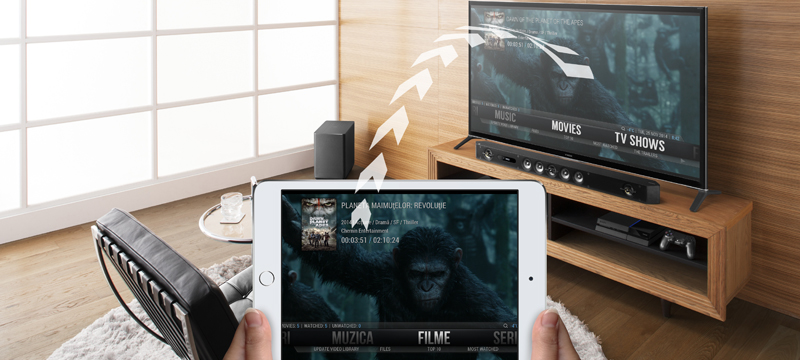 viki control multimedia