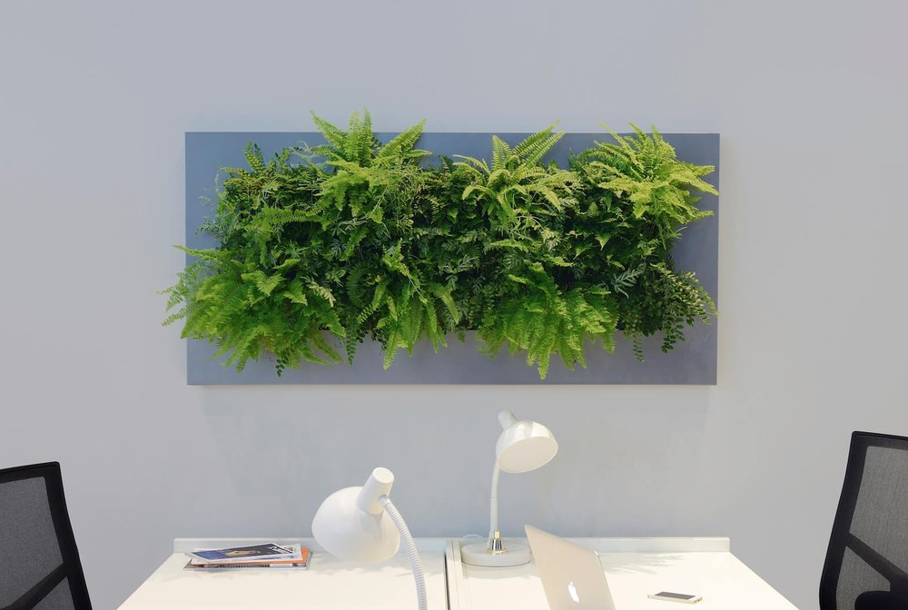 viki live wall plants